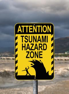 Tsunami forex factory